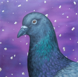 """Pigeon Portrait • 2012 • Oil on canvas • 18""""x18"""""""