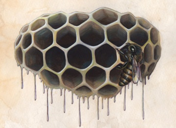 """Hive Study • 2014 • Watercolor and Gouache on Paper • 8""""x10"""""""