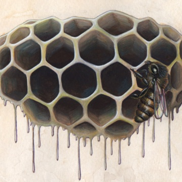 "Hive Study • 2014 • Watercolor and Gouache on Paper • 8""x10"""